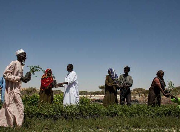 La Banque mondiale évalue ses projets au Tchad