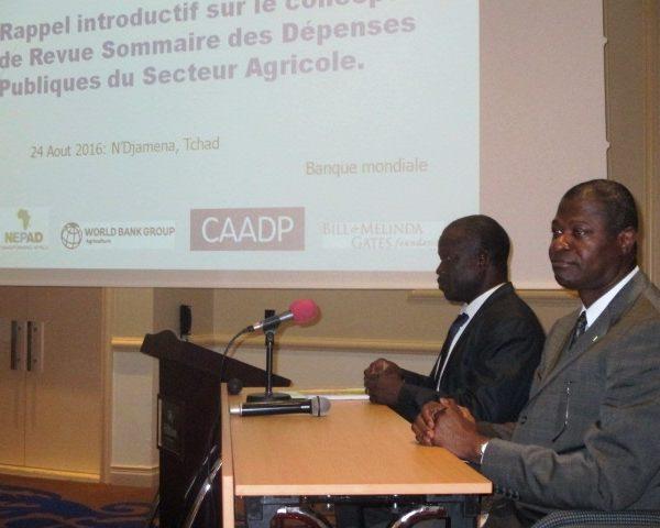 La Banque mondiale examine les  dépenses agricoles  du Tchad