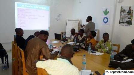 Le RECHANUT forme les journalistes sur la malnutrition au Tchad