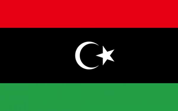 Tchad, Niger et Soudan au chevet de la Libye