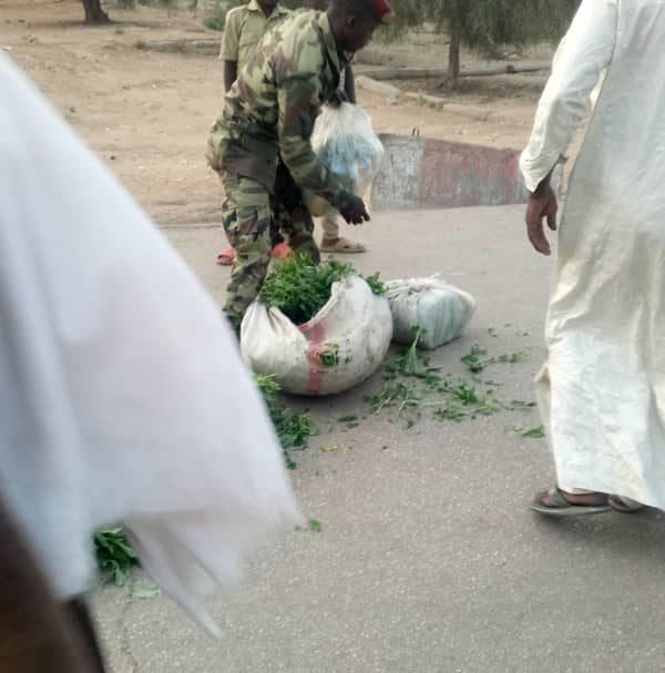 Du carburant frauduleux retrouvé dans des sacs de légumes importés du Cameroun
