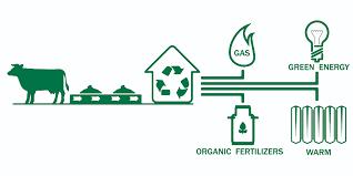 Energie: du Biogaz pour répondre aux besoins des ménages tchadiens.