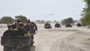 Plusieurs morts suite à une attaque de Boko Haram dans le Lac 1