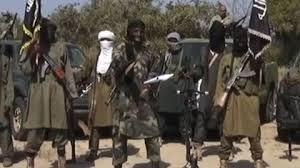 Une kamikaze tue cinq personnes au Lac Tchad 1