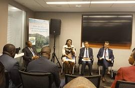 La Bdeac aux côtés des Etats de la Ceeac à New-York pour la protection des forêts du Bassin du Congo 1