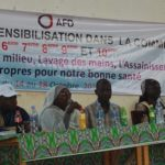 L'Artémésia Annua strictement interdit au Tchad 2