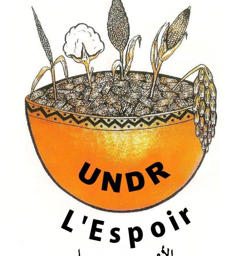 L'Undr entend saisir la justice pour la modification de la configuration actuelle de l'administration territoriale 1