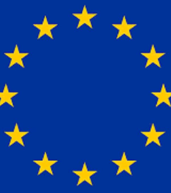 L'UE fait un don de sept véhicules blindés au G5 Sahel