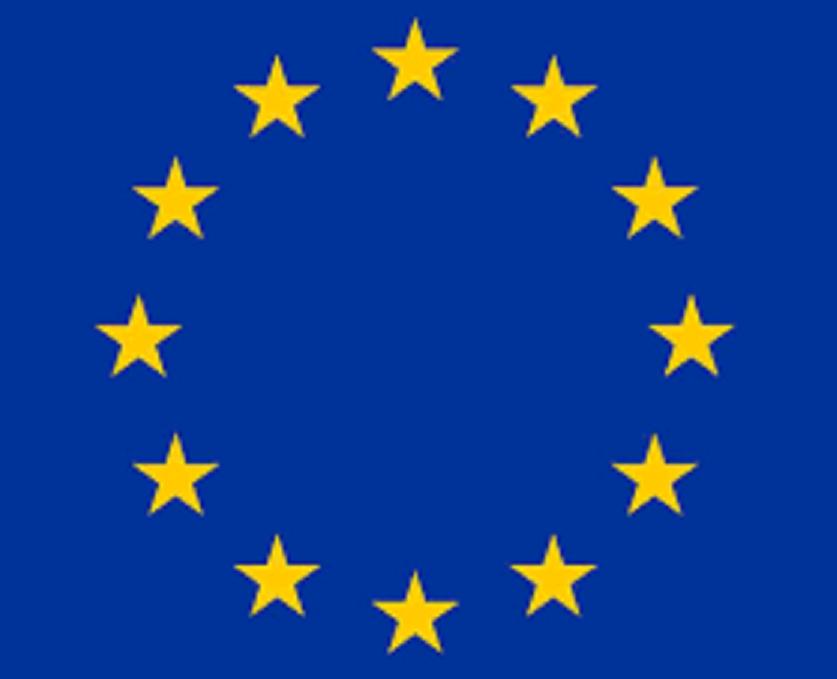 L'UE fait un don de sept véhicules blindés au G5 Sahel 1