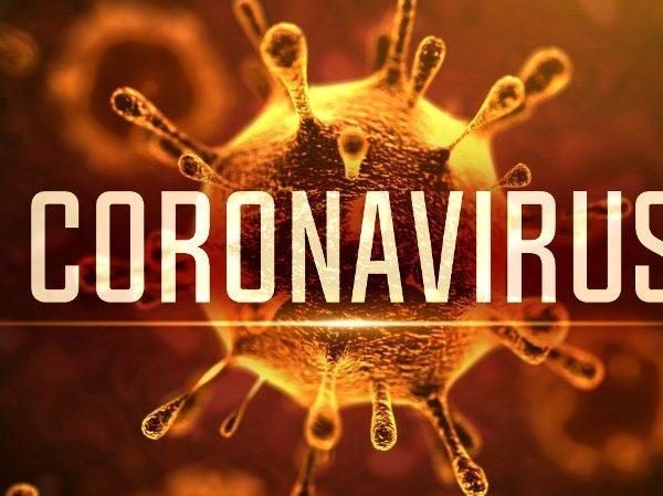Coronavirus: les députés appellent le gouvernement à renforcer les mesures de prévention