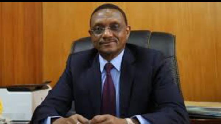 Nos compatriotes bloqués à l'étranger seront rapatriés: Chérif Mahamat Zène 1