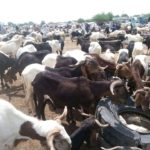 L'Ujn plaide pour les Brasseries du Tchad 3