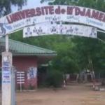 L'Ambassade de l'Allemande au Tchad offre 15.000 kits de dépistage de Covid-19 au gouvernement 2
