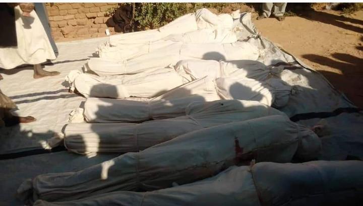 L'indignation de la Ctddh après des massacres à Dar Tama 1
