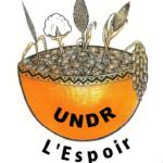 Cemac: adoption par le Conseil des ministres de l'Ueac du budget 2021 2