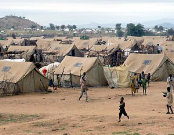 3 millions de dollars du Japon pour la protection et l'assistance des déplacés, réfugiés et communautés d'accueil du Lac-Tchad