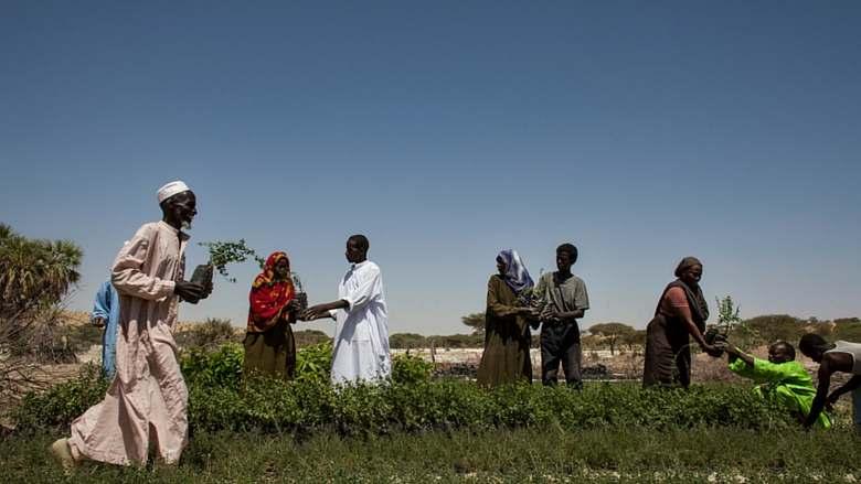 Le gouvernement tchadien et ses partenaires valident la nouvelle revue des dépenses publiques agricoles et alimentaires 1