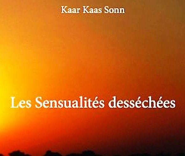 Les « Pyroèmes » de Kaar Kaas Sonn dans les rayons