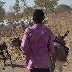 Deux tchadiens tués et trois autres blessés dans le Sahara nigérien 3