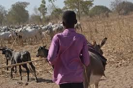Les Etats-Unis reclassent le Tchad au niveau 2 dans la lutte contre la traite des personnes 1
