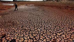 Le Tchad se dote d'une base de données informatisées pour la lutte contre le changement climatique 1