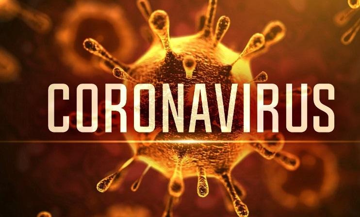 Coronavirus: les députés appellent le gouvernement à renforcer les mesures de prévention 1