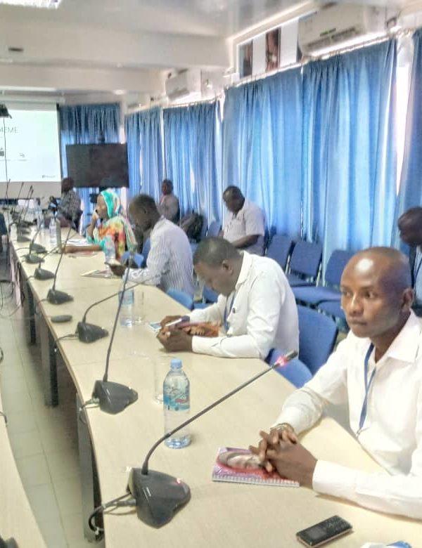 Les Nations-Unies outillent les journalistes tchadiens sur les techniques d'information sur le Covid-19