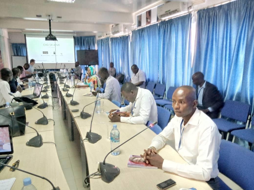 Les Nations-Unies outillent les journalistes tchadiens sur les techniques d'information sur le Covid-19 1