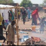 Appui au Renforcement de capacités institutionnelles de la Commission du Bassin du Lac Tchad (CBLT), en vue de la mise en œuvre effective de la Stratégie Régionale de Stabilisation (SRS)(Tchad et Niger)Cadre de Gestion Environnementale et Sociale (CGES) 2
