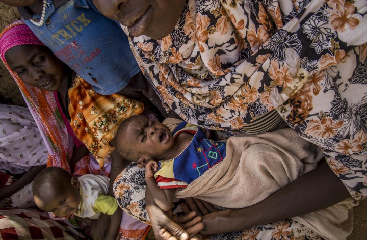 5,9 millions de personnes n'ont pas accès à une alimentation saine, 4,4 millions d'autres souffrent de malnutrition cette année au Tchad 1