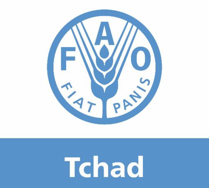 La Fao a remis 2106,285 tonnes de semences pluviales, 100 000 outils aratoires et 16 tonnes de semences maraîchères à l'Etat tchadien 1